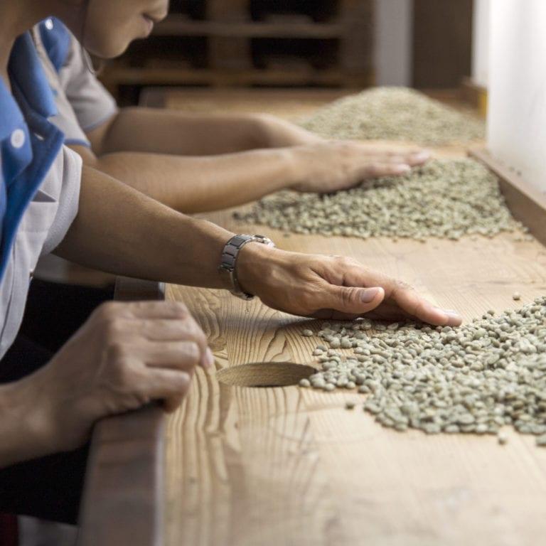 Coffee Farmer - Fair Trade